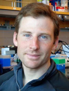 Ian Vogel